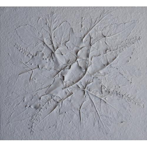Bianco 32. Natura velata/Mummie di campo