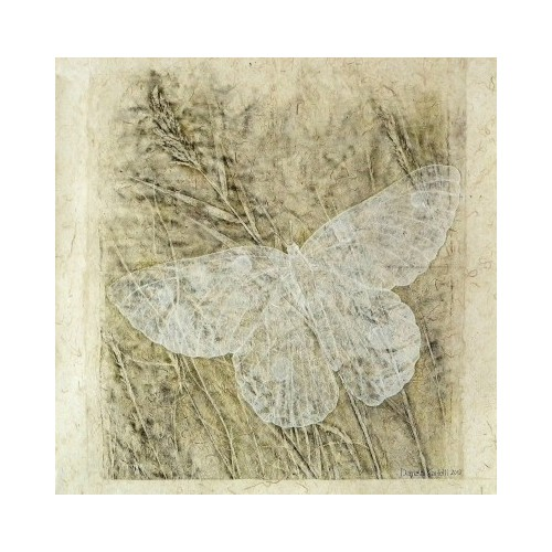 Akiko la farfalla bianca